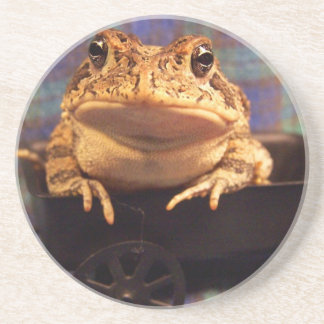 Frog Toad in black wagon with plaid background Beverage Coaster