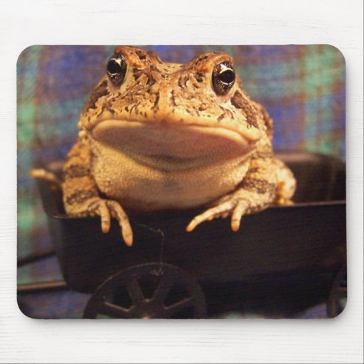 Frog Toad in black wagon with plaid background Mouse Pad
