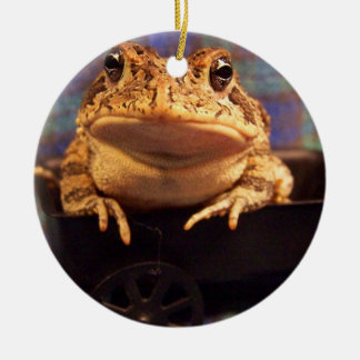 Frog Toad in black wagon with plaid background Christmas Ornaments