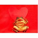 Frog Toad in front of red heart photo Photo Sculpture