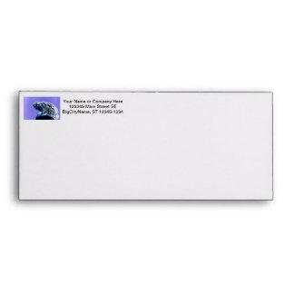 Frog toad  photo inverted blue black envelope