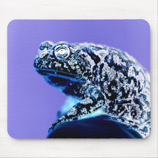 Frog toad  photo inverted blue black mouse pads