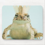 Frog wearing crown mouse pads