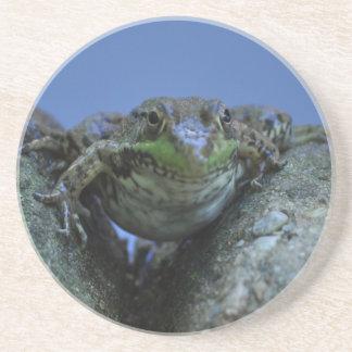 frog welcome coasters