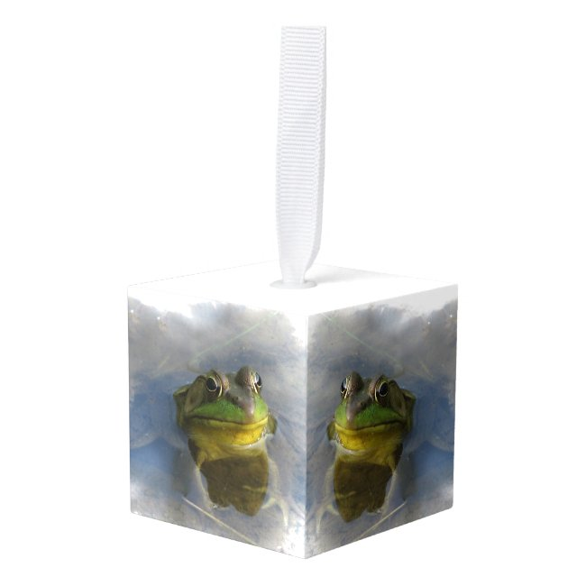 Frog with Attitude Animal Cube Ornament