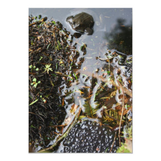 Frog with Frog Spawn Invitation Card