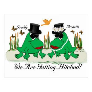 Frogette & Freddy.... Postcard