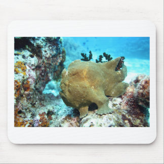 Frogfish camouflaged mouse pad