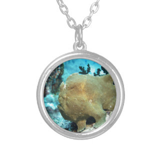 Frogfish camouflaged round pendant necklace