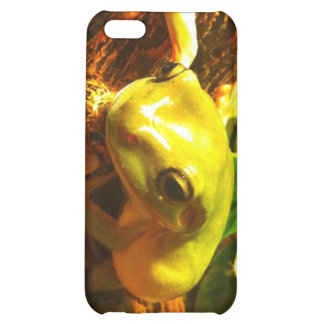 Frogg iPhone 5C Covers