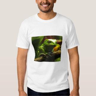 frogg playera