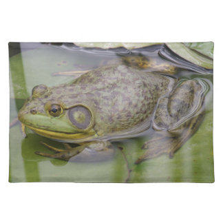 Froggy Cloth Placemat