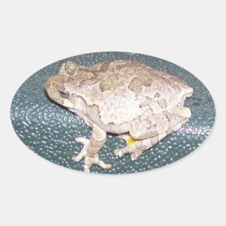 ¡Froggy de Feelin! Pegatina Ovalada