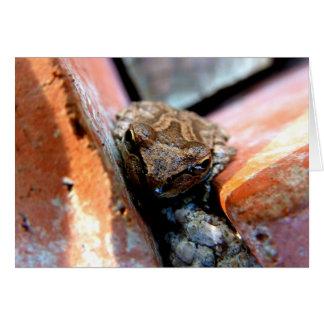 Froggy Face Card