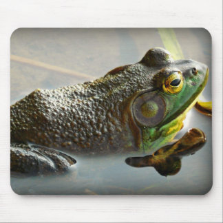 Froggy Mouse Pad