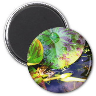 Froglodite 2 Inch Round Magnet