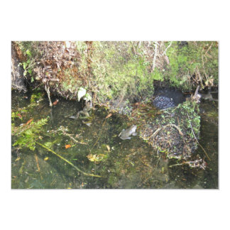 Frogs and Frog Spawn in a Pond Invitation Personalized Announcements