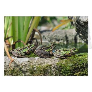 frogs birthday card