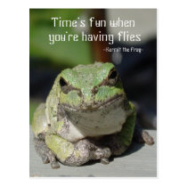 Frogs & Flies Postcard