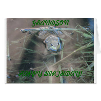 Frogs, Grandson Birthday Stationery Note Card
