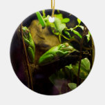 Frogs in a Tree Christmas Tree Ornaments