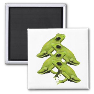 FROGS IN FOUR 2 INCH SQUARE MAGNET
