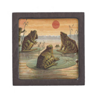 Frogs on Lily pads Vintage Jewelry Box