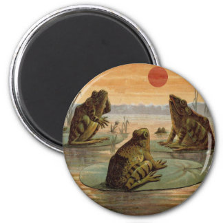 Frogs on Lily pads Vintage Magnet