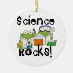 Frogs Science Rocks Ceramic Ornament