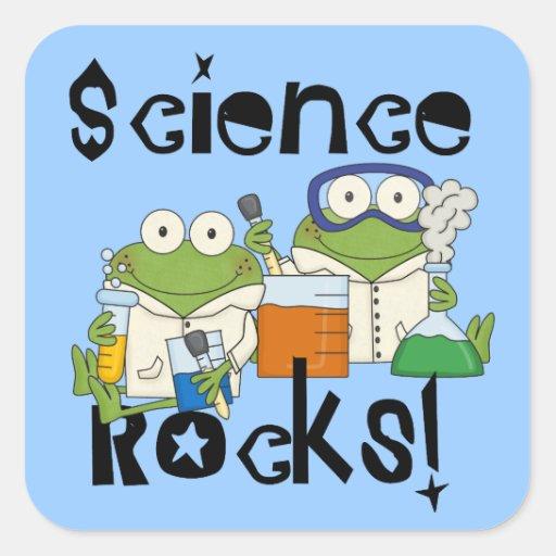 Frogs Science Rocks Square Sticker