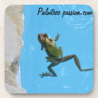 frogs swimming  photograph on drink coaster