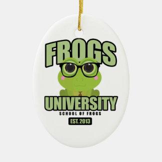 Frogs University Ceramic Ornament