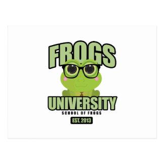 Frogs University Postcard