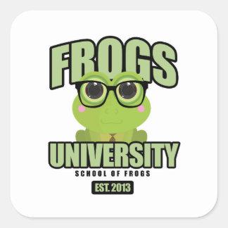 Frogs University Square Sticker