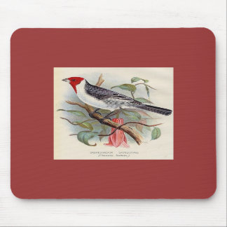 Frohawk - Dominican Cardinal Mouse Mat