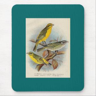 Frohawk - St. Helena Waxbill & Green Singing Finch Mouse Pad