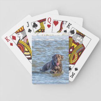 Frolic in the Ocean Playing Cards