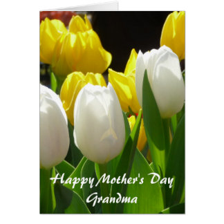 From (1) Grandchild to Grandmother Greeting Card