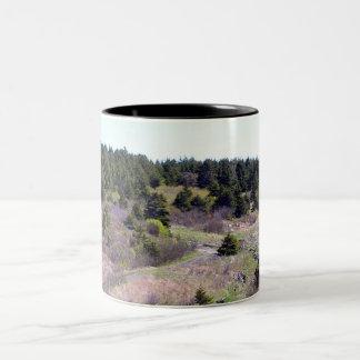 From A Distance Mug