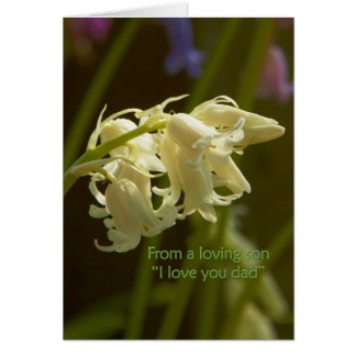 From a loving son I love you dad sympathy Greeting Cards