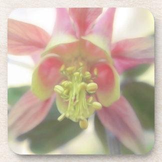 From Below - Aquilegia Bloom Coaster
