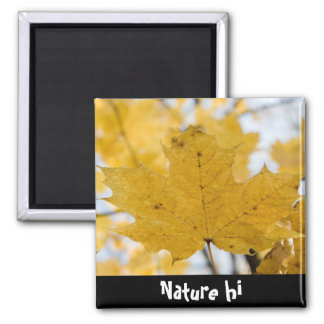 from fall to heaven 2 inch square magnet
