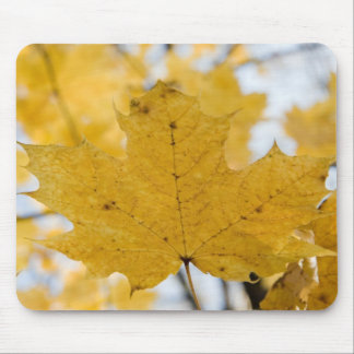 from fall to heaven mouse pad
