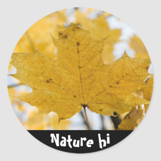 from fall to heaven classic round sticker