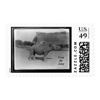From Far away, funny animals Stamp
