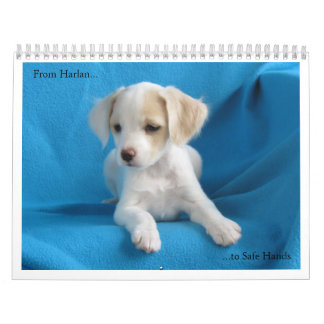 From Harlan to Safe Hands Wall Calendars