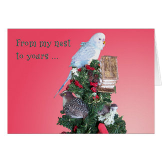 From My Nest Greeting Card