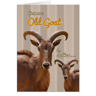 From One Old Goat to Another Funny Birthday Card