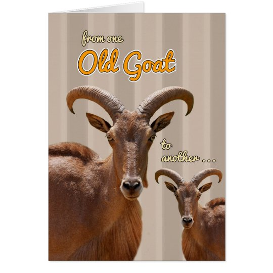 From one old goat to another funny birthday card zazzle from one old goat to another funny birthday card bookmarktalkfo Image collections