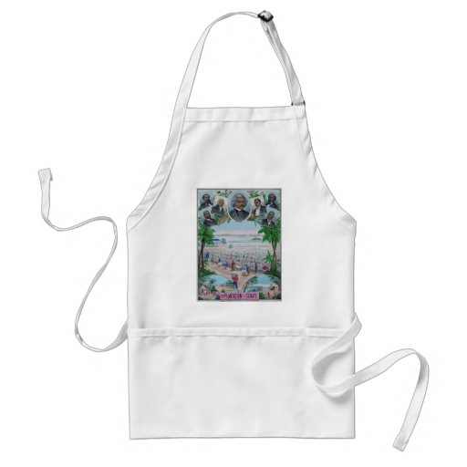 From Plantation To The Senate Adult Apron